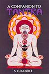 A Companion to Tantra 1st Edition,8170174023,9788170174028