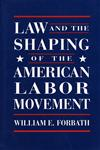 Law and the Shaping of the American Labor Movement,0674517822,9780674517820