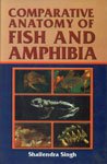 Comparative Anatomy of Fish and Amphibia For B.Sc. and M.Sc. Students of Indian Universities 1st Edition,8180300692,9788180300691