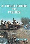A Field Guide to Fishes Chilika Lake, Orissa, East Coast of India 1st Published,818370199X,9788183701990