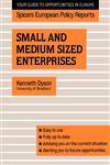 Small and Medium Sized Enterprises,0415038294,9780415038294