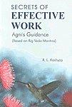 Secrets of Effective Work Agni's Guidance : Based on Rig Veda Mantras Reprint