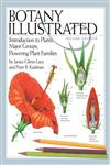 Botany Illustrated Introduction to Plants, Major Groups, Flowering Plant Families 2nd Edition,0387288708,9780387288703