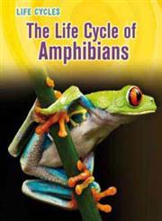 The Life Cycle of Amphibians,1432989405,9781432989408