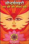 सौन्दर्यलहरी तन्त्र-दृष्टि और सौन्दर्य-सृष्टि 1st Edition,8171245374,9788171245376