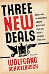 Three New Deals Reflections on Roosevelt's America, Mussolini's Italy, and Hitler's Germany, 1933-1939,0312427433,9780312427436
